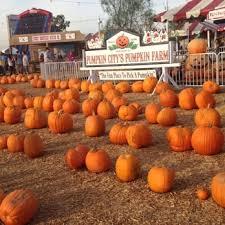 Carmichaels Pumpkin Patch Oklahoma by Carmichaels Pumpkin Patch Phone Number