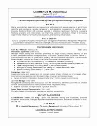 Immigration Services Officer Sample Resume Lovely Best Solutions Format For Teachers Job In Dubai