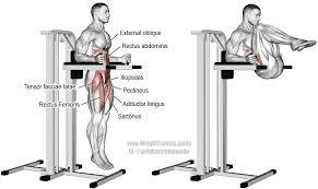 100 roman chair leg raises benefits best 4 sit up benches