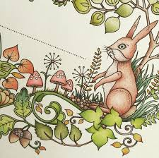 Top Tips For Exploring The Possibilities Of Colouring In Books