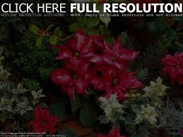 Diy Christmas Tree Preservative by Best 10 Pallet Tree Ideas On Pinterest Pallet Christmas Tree