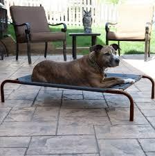 coolaroo dog bed large home design ideas coolaroo large dog bed