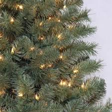 Christmas Tree Watering Funnel Home Depot by How Much Are Real Christmas Trees At Home Depot Christmas Lights
