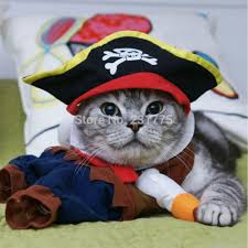 costume for cat aliexpress buy pirate pet cat costume clothes for