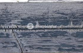 Vintage Grunge Wood Texture