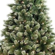 7ft Christmas Tree Pre Lit by 19 7ft Pre Lit Christmas Tree Ebay Ideas About Collapsible