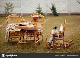 Cat On Rocking Chair — Stock Photo © Shevtsovy #136346872