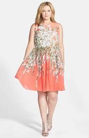 Adrianna Papell Floral Print Pleat Chiffon Fit & Flare Dress Plus