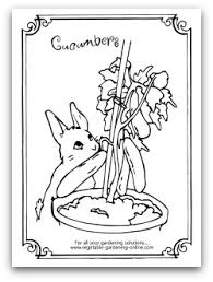 Garden Cucumber Coloring Page Printable