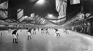 skating rink wikipédia