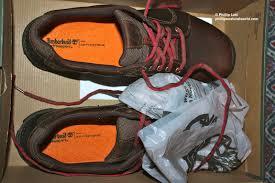 Pas Pumpkin Patch Punxsutawney by The Traveling Shoes Phillip U0027s Natural World