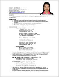 Sample Resume For Government Employee Philippines 312074 Bunch Ideas