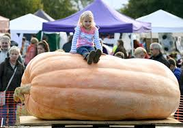 Heaviest Pumpkin Ever by Autumn Pumpkin Festival Sees Twin Brothers Break British Record By