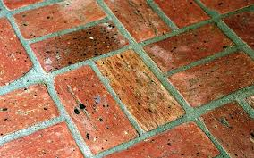 chicago common fossilcut brick flooring sq ft thin brick