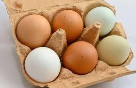 ei kochen und backen veganer ei ersatz eat superfoods