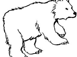 Free Bear Animal Coloring Pages Grizzly Polar