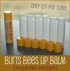 Burts Pumpkin Farm Controversy by Best 25 Buy Bees Ideas On Pinterest Buy Honey Bees Burt U0027s Bees