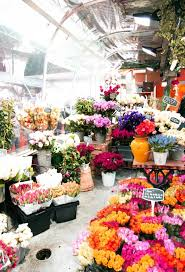 908 best Flower Shops images on Pinterest