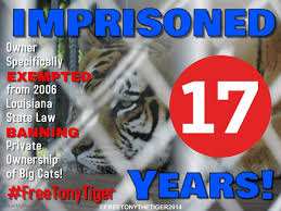 100 Tiger Truck Stop Louisiana Free Tony The On Animal Protection Animal Rescue Free
