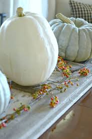 Corona Del Mar Pumpkin Patch by 83 Best Fall Decor Blue Pumpkins Images On Pinterest Fall