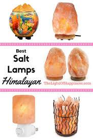 Earthbound Salt Stone Lamp by The 25 Best Salt Lamp Bulbs Ideas On Pinterest Salt Crystal