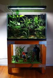 18 Best Fish Tank Images On Pinterest | Aquarium Ideas, Diy ... I Really Want A Jellyfish Aquarium Home Pinterest Awesome Fish Tank Idea Cool Ideas 6741 The Top 10 Hotel Aquariums Photos Huffpost Diy Barconsole Table Mac Marlborough Tank Stand Alex Gives Up Amusing Experiments 18 Best Fish Images On Aquarium Ideas Diy Clear For Life Hexagon Hayneedle Bar Custom Tanks Ponds Designs For Freshwater Modern 364 And Tropical Ov Cylinder 2