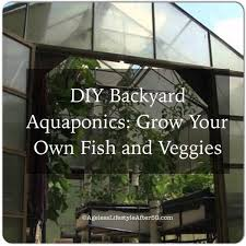 DIY Backyard Aquaponics Grow Your Own Fish And Veggies Lynn