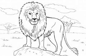 Lion Standing On A Rock Coloring Page