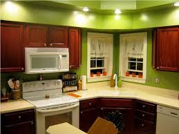 Sage Green Kitchen Cabinets With White Appliances by Kitchen Paint Home Living Room Ideas