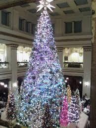 Plantable Christmas Trees Columbus Ohio by Swarovski U0027s Annual Lighting Of The Beautiful Christmas Trees In