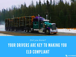 ELD Mandate: Avoiding Citations With Better Training Vehicle Graphics For The Mercedesbenz Truck Traing Fleet Photos Movational Speaker Anthony Trucks Ontario Driving Schools React To Entry Level Changes Transportation Cotton Pants Boys Cars Trains Sa Aim Produce Trained Trusted And Sted Drivers Defensive Drivers Hyclasse Group Of Companies Wallace States Cdl Traing In Winston County Produces First Group Dumps Potty Super Undies Original Articulated Dump Adt Simulator 5dt Reduces Accidents Cat Simulators Machine Operator Total