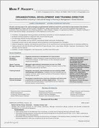 Gallery Of Sample Net Resumes For Experienced Resume Developer With 2 Year Experience Impressive