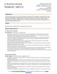 Jr Business Analyst Resume Samples