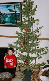 Kinds Of Christmas Trees by Millivers Travels Blog Archive Memories Of Christmas Past In