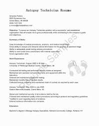 Cover Letter Opening Sentence Awesome First Paragraph Examples Luxury Academic Resume Sample