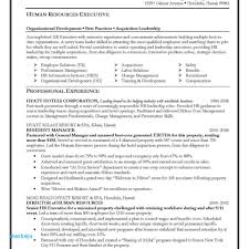 Business Analyst Resume Sample Team Leader Cover Letter Examples 7 Ba Cv