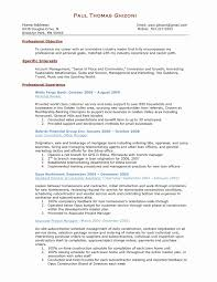 100 Assistant Project Manager Resume Account Sample New