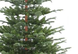 8ft Artificial Christmas Tree by 7ft Nobleman Spruce Feel Real Artificial Christmas Tree Hayes