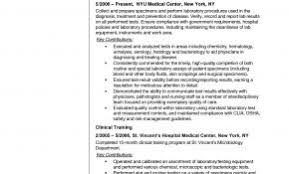Related Posts For Sample Resume Objectives Lab Assistant Awesome Technician Sidemcicek Inspiration Examples