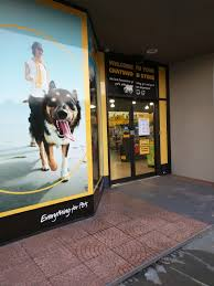 PETBARN PTY LTD CHATSWOOD NSW - Merchant Details You Me Pitch Roof Dog Kennel Small Petbarn Pet Barn Leads On Pet Christmas Gifts Australian Newsagency Blog Amazoncom Petmate Houses Supplies Petbarn Pty Ltd Chatswood Nsw Merchant Details Double Medium Blacktown Mega Centre The Local Business Rothwell Redcliffe Australia Signs Store Stock Photo My 3 Rescue Chis Decked Out For December Holidays 2015 Fab Hermit Crab Enclosure Vanessa Pikerussell Flickr Pleasant Royal Canin German Spherd Food 12kg Pet2jpg