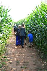 Minges Pumpkin Festival 2014 by 135 Best Corn Mazes Images On Pinterest Farms Art And Circles