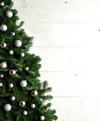 Silver Tip Christmas Tree Oregon by Tips To Get Rid Of Your Tree After The Holiday Season Unisource