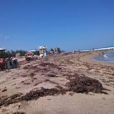 bathtub reef 66 photos 20 reviews beaches 1585 macarthur