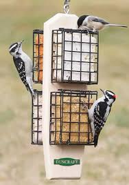 15 best cool bird feeders images on Pinterest