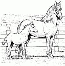 Free Printable Horse Coloring Pages For Kids Realistic