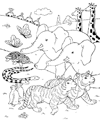Safari Bear Colouring Pages Page 2