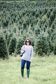 Fraser Fir Christmas Trees North Carolina by Colossians 2 7 North Carolina Christmas Tree Farm How 2 Wear