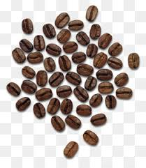 Coffee PNG Transparent Clipart Free Download
