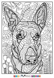 Free Printable Australian Cattle Dog Coloring Page Lily Available For Download Simple And