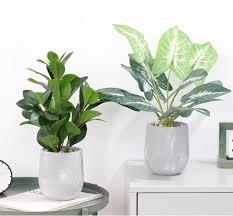 nordischer kreativer blumentopf stein großer moderner minimalisti scher boden bough pot wohnzimmer innen garten grün simulierter zement pflanzer buy